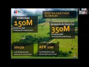 2do W. Experiencias y Perspectivas en Restauración eco-sistémica en América Latina, post COVID-19