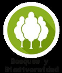 Bosques Y Biodiversidad 135