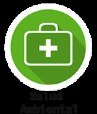 Salud Ambiental 135